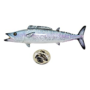 Wahoo Pin ~ Hand Painted ~ Lapel Pin ~ Hand Painted Lapel Pin ~ Sarah's Treats & Treasures