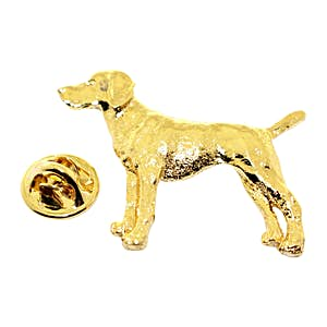 Vizsla Pin ~ 24K Gold ~ Lapel Pin ~ 24K Gold Lapel Pin ~ Sarah's Treats & Treasures