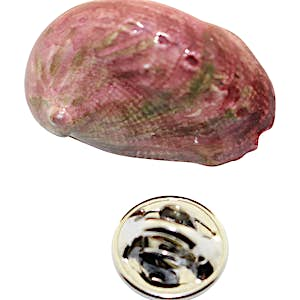Abalone Shell Pin ~ Hand Painted ~ Lapel Pin ~ Sarah's Treats & Treasures